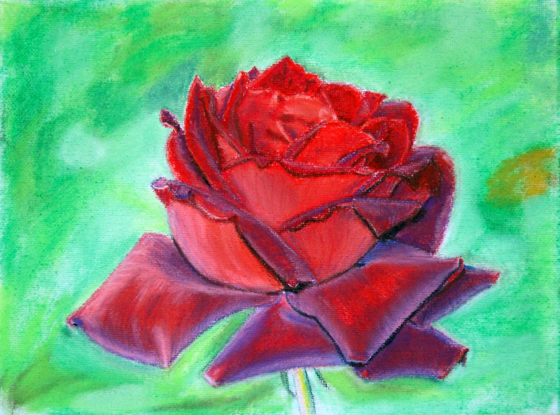 A4 soft pastel Rose