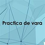 Workshopul de practică 2021